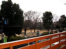 ウッドバルコニーから見える公園