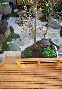 バルコニーから見えるデッキとシャラの木